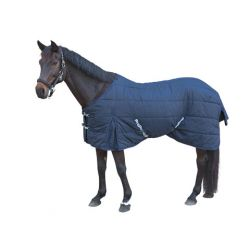RugBe IceProtect Winter Blanket