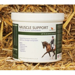 Muscle Support Red Horse