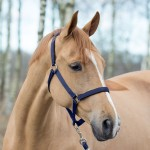 Horze Halter with Lining