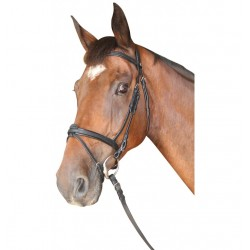 Privilege Equitation Cabourg Snaffle With Flash Noseband