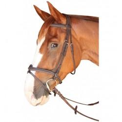 Privilege Equitation Dinard C Bridle