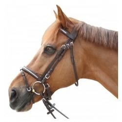 Privilege Equitation Pull Back Lacanau Bridle