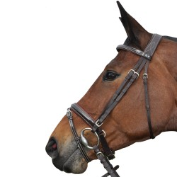 Privilege Equitation Pull Back Cannes Bridle