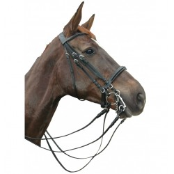 Privilege Equitation Pull Back Montigny Bridle