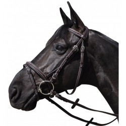 Wellington Bridle Flags and Cup