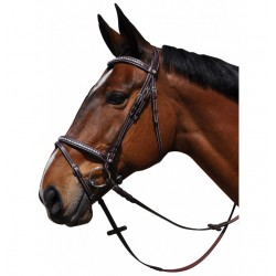 Zurich Bridle Flags and Cup