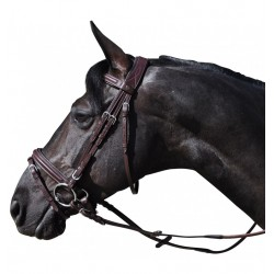 Hickstead Bridle Flags and Cup