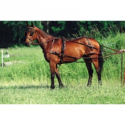 Excelsior Breastplate harness, oiled leather Brown
