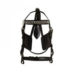 Excelsior Bridle for harness