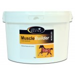 Muscle builder Horse Master