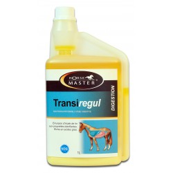Horse Master Transiregul