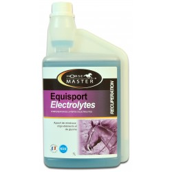 equisport electrolitos Horse Master