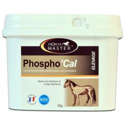 PhosphoCal Horse Master