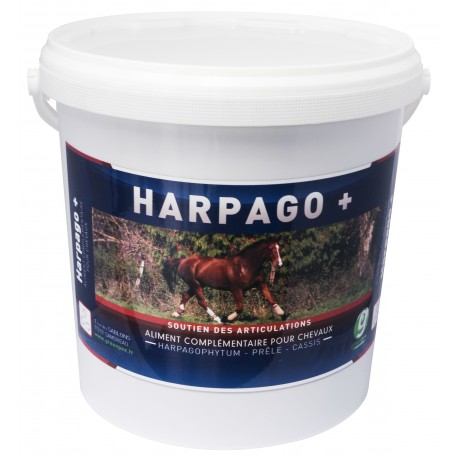 Harpago Greenpex Locomotion Du Cheval Complement Alimentaire