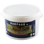 Harpago + Greenpex 1,5 kg