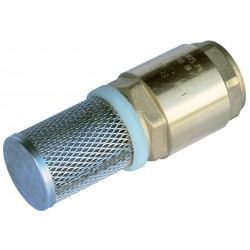 Strainer with check valve