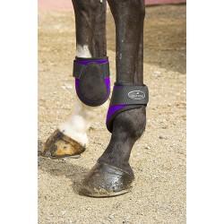 Norton Neoprene fetlock boots Burgundy