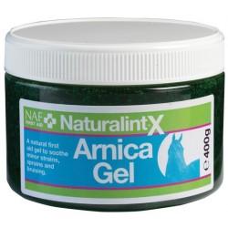 Arnica Gel NaturalintX
