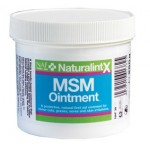 MSM Ointment NaturalintX