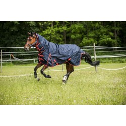 "Norton ""600 D"" Combo turnout rug"
