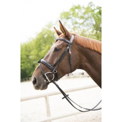 """NORTON LUXE Wide """"Softy"""" bridle, flash noseband Black"""
