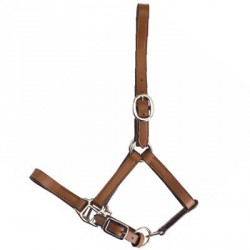 Apollo Suckling headcollar
