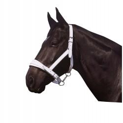Apollo Chrome leather headcollar