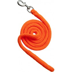 Neon lead rope