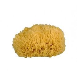 Gerby natural sponge