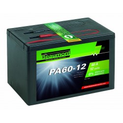 Pile Paddock alcaline 12V 60A Beaumont