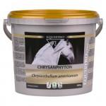 EQUISTRO CHRYSANPHYTON