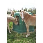 Ratelier hexagonal avec cheval mangeant le foin