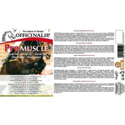 Pienso complementario Officinalis® Pro Muscle