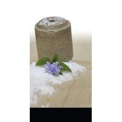 """Piedra de sal Officinalis® Lollyroll"""" - Anís / Hinojo / Achicoria / Melisa"""""""