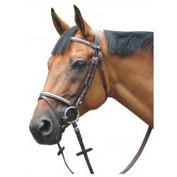 Bridon Deauville Combiné Privilege Equitation