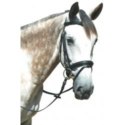 Privilege Equitation Pull Back Le Touquet Bridle