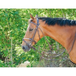 T de T Gogue Aid Reins Dark havana brown