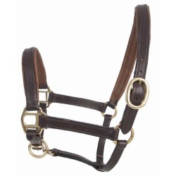 T de T Foal Leather Halter Dark brown