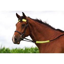 Reflective reins/browband cover