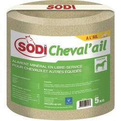 SODICHEVAL'AIL salt block with garlic