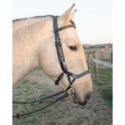 T de T Brauner bridle Softy crown Black