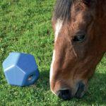 Jouet Drop Feeder La Gee bleu avec cheval
