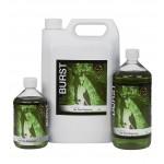 Shampoing antiseptique LeMieux Tea Tree Burst