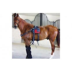 MaxPro - cryothérapie pour chevaux