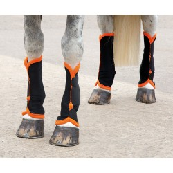 Shires Fly Turnout Socks Black / orange