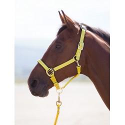 Shires Topaz Nylon Headcollar Yellow