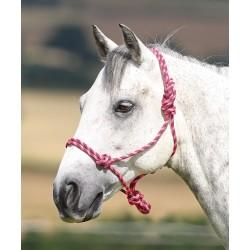Shires Rope Control Headcollar pink / black