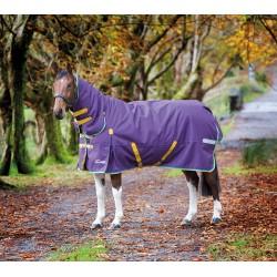 Shires Highlander Plus 200 Combo Purple