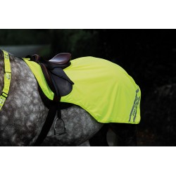 Shires Equi-Flector® Exercise Sheet Yellow