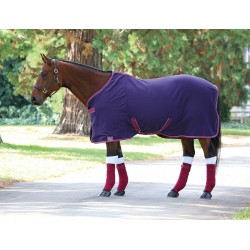 Shires Tempest Original Jersey Cooler Navy blue / rojo